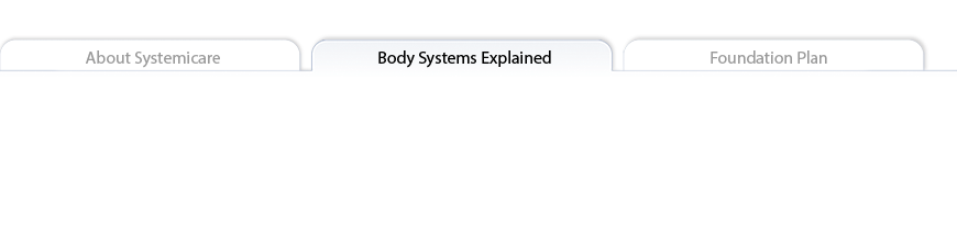Body Systems Explained tab